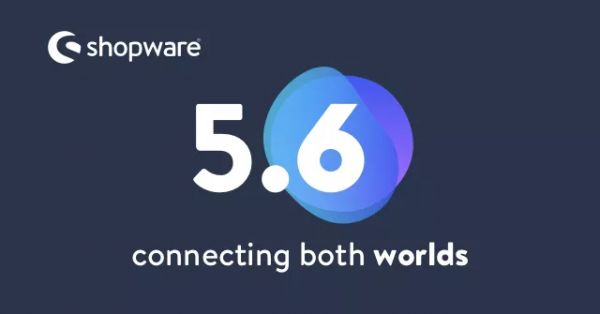 shopware-update