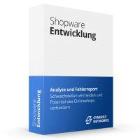 Shopware Ist-Stand-Analyse und Fehlerreport